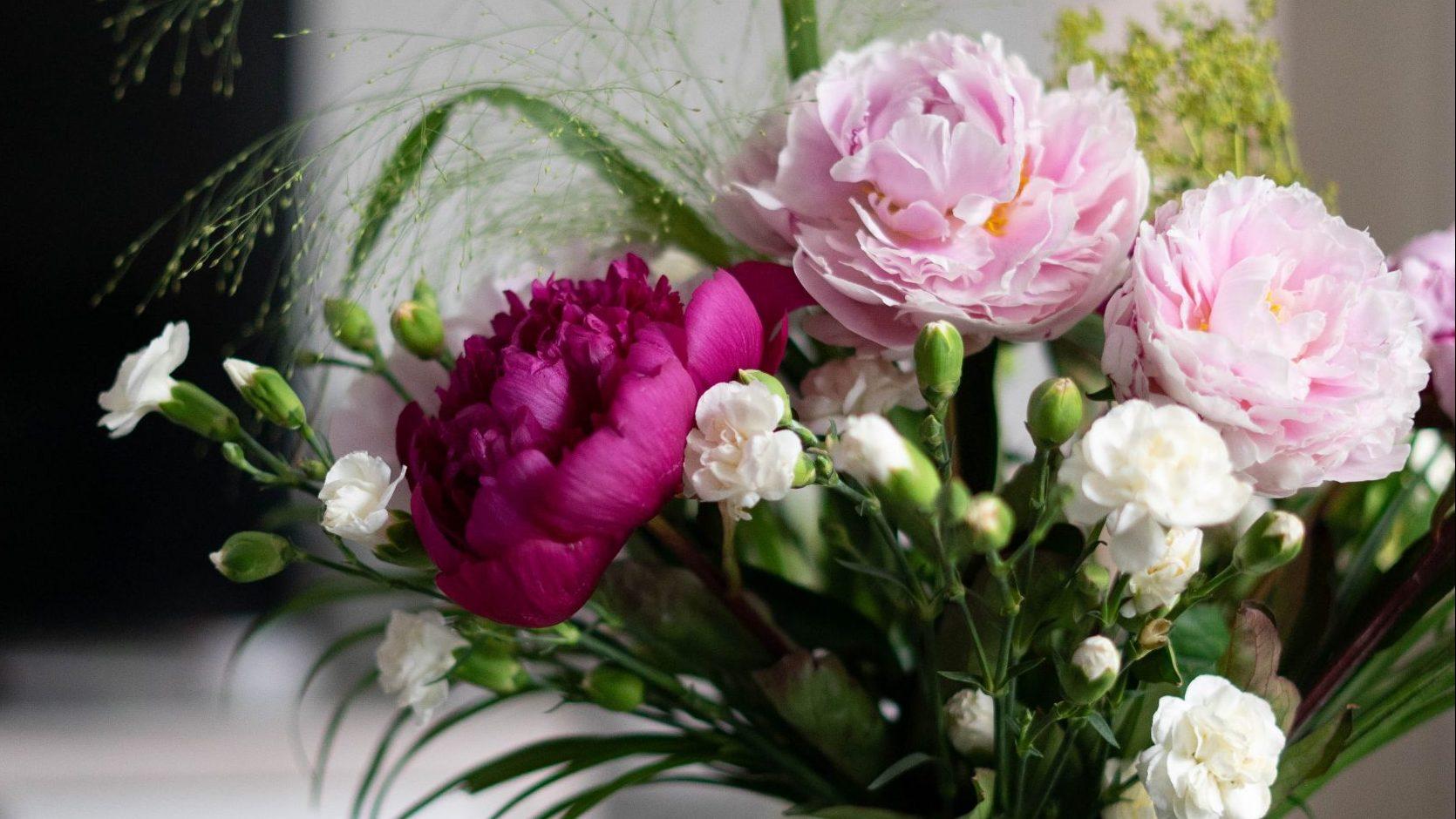 Wir wollen mehr als Blumen!